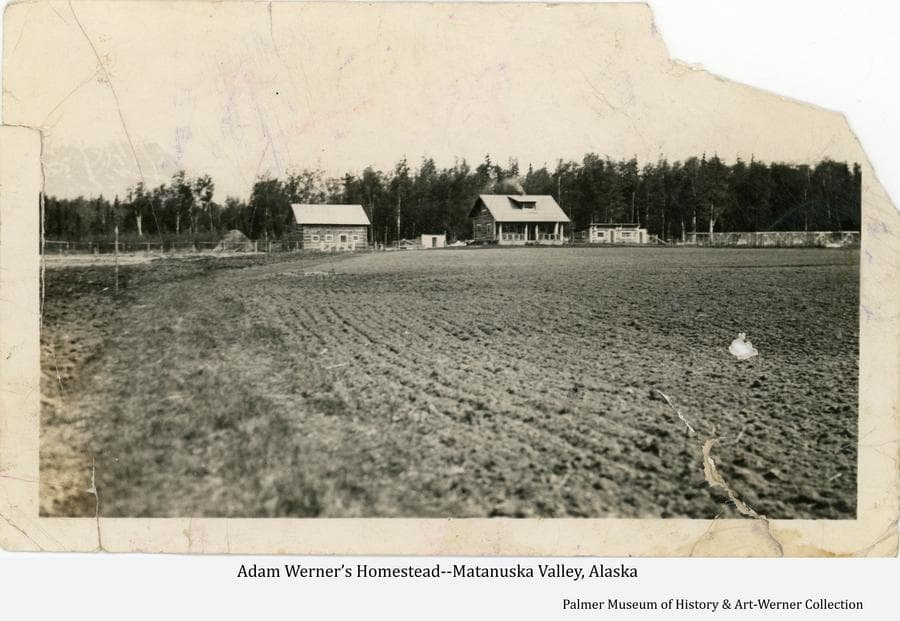 Image shows a tilled field in foreground, a log house, barn, chicken house, fox pens, a hay stack and another small building in middle ground with heavy forest behind.