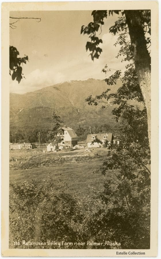 """Image shows a Colony farmstead of house, barn and outbuildings in middle ground framed by trees and brush in foreground.  Talkeetna mountains form the background.  Note on the reverse indicates the location is 25 miles west of Palmer.  The name """"Mrs. Amos Landis"""" is also written on the back."""