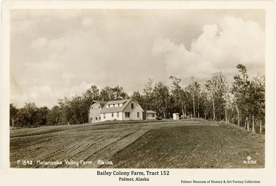 """Image is a summer view of a Matanuska Colony house, barn and outbuildings, identified as belonging to Colonists Ferber and Ruth Bailey on tract #152 located on the northern outskirts of Palmer.  The foreground is a harvested grain field partially disked.  The barn would later be moved forward past the house to allow the Glenn Highway to be straightened by cutting through """"Bailey Hill"""" at the location where the barn is shown in this photo."""
