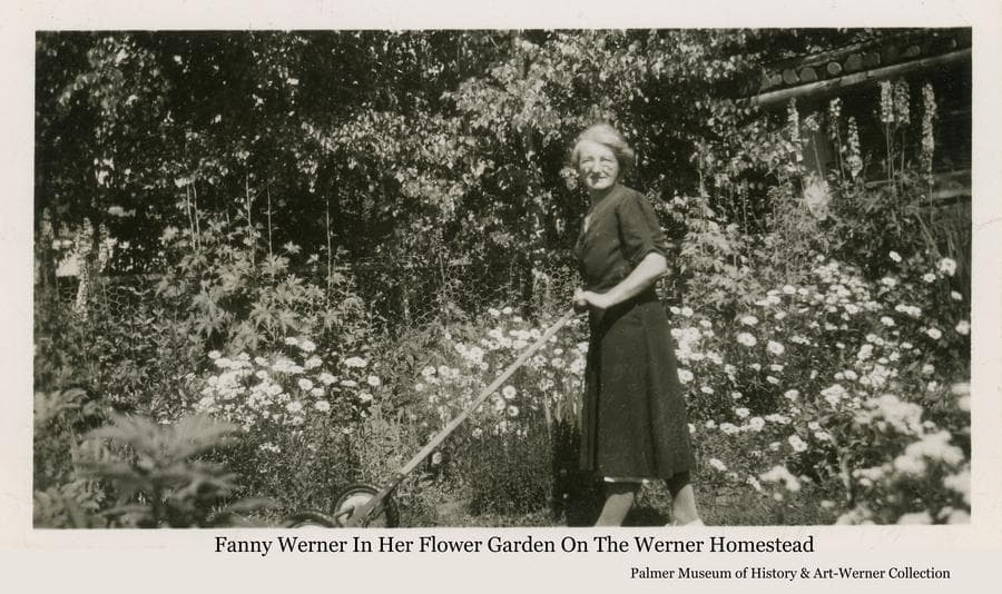 Image is of Fanny Werner pushing a lawnmower on her Homestead with flowers and shrubs behind.  A portion of chicken wire fence and a log building are also visible behind her.