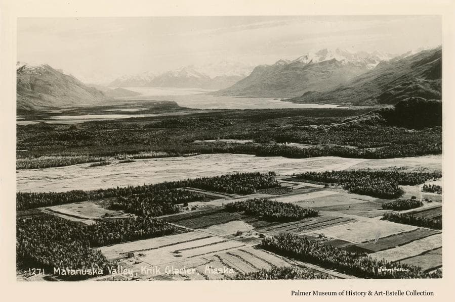 """Image is a low oblique aerial view across farm land of the """"Springer System"""" south of Palmer in the foreground, across the Matanuska River in middle ground, and up the Knik River valley to the Knik Glacier.  The Bodenburg Butte is visible at right.  Farms and forest clearing patterns, stump rows and roads are apparent."""