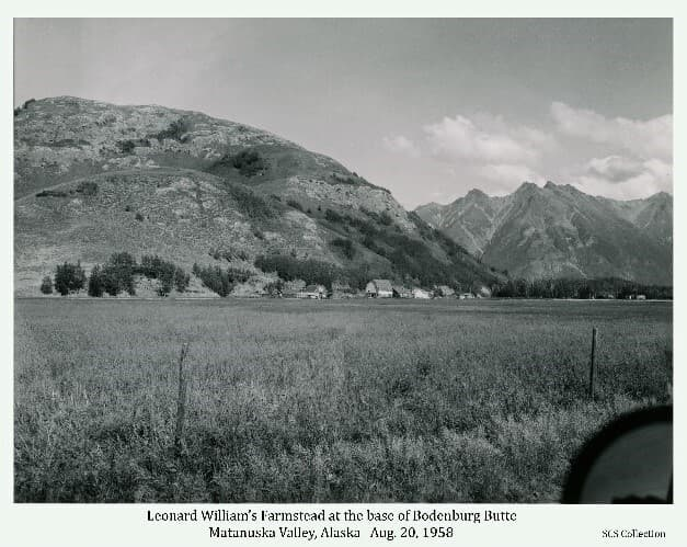 """Image shows a summer season fenced in foreground with a farmstead in middle ground at the base of Bodenburg Butte. Mountains are in background. Caption: """"Leonard William's farm. Brome fields with Bodenburg Butte in background."""""""