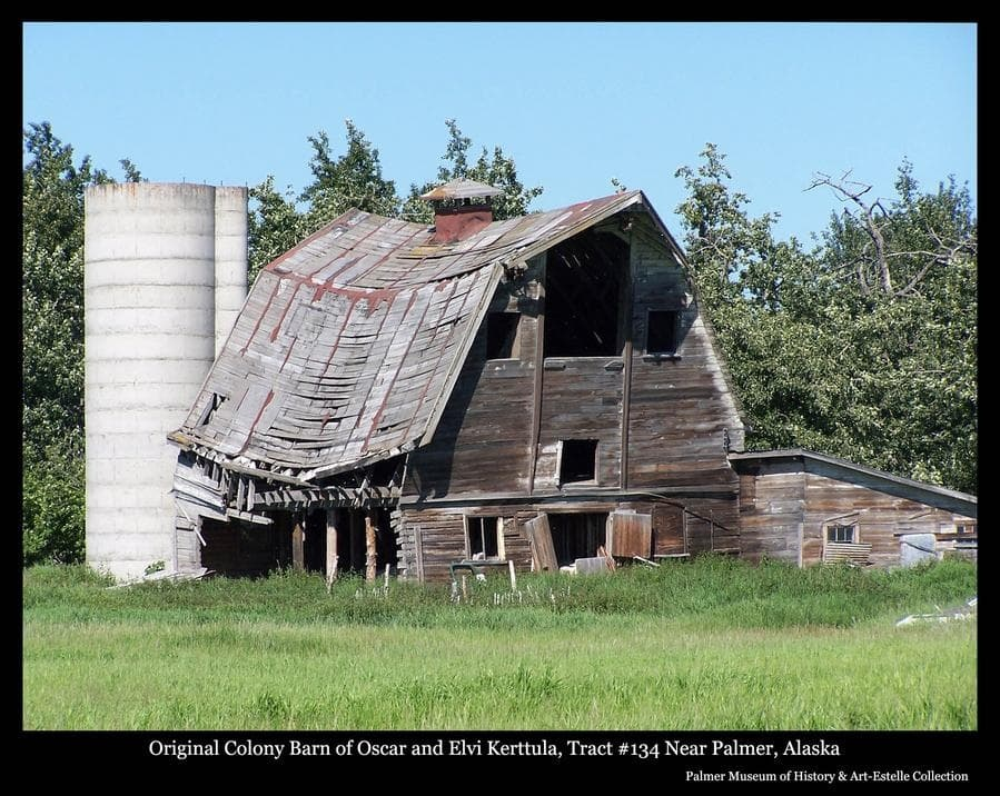 Image is a summer view of a Colony Barn, identified as located on Tract #134 north of Palmer, having originally belonged to Colonists Oscar and Elvi Kerttula.  The barn exhibits significance evidence of advanced stages of collapse and came down in 2006.  A smaller attached structure, perhaps a milking parlor, is at right and a concrete upright silo is behind at left.