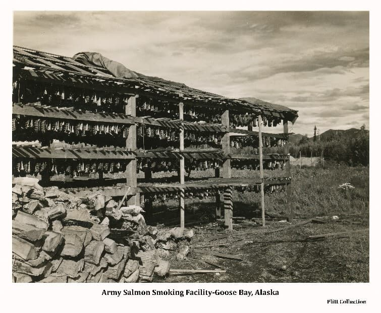 Image shows a fish smoking & drying rack established by the Army at Goose Bay on Cook Inlet. A stack of split firewood is in near foreground in front of the drying rack holding a large number of hanging salmon. A canvas tarp covers part of the structure. A Quanset Hut is visible behind the rack with forest beyond.