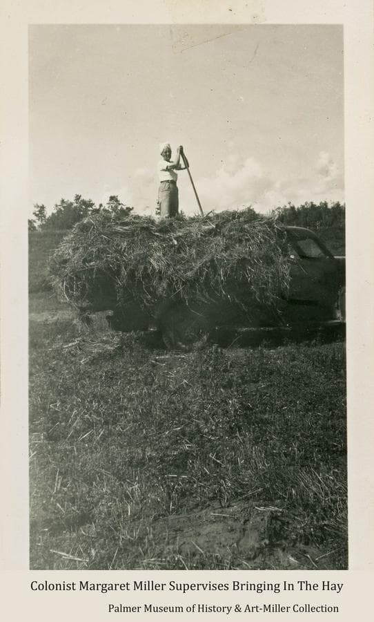 Image is of Colonist Margaret Miller standing atop hay stacked on the back of a pickup truck to be hauled from the field.  She leans on her pitchfork waiting for more hay to be pitched up to her to arrange for a proper load.