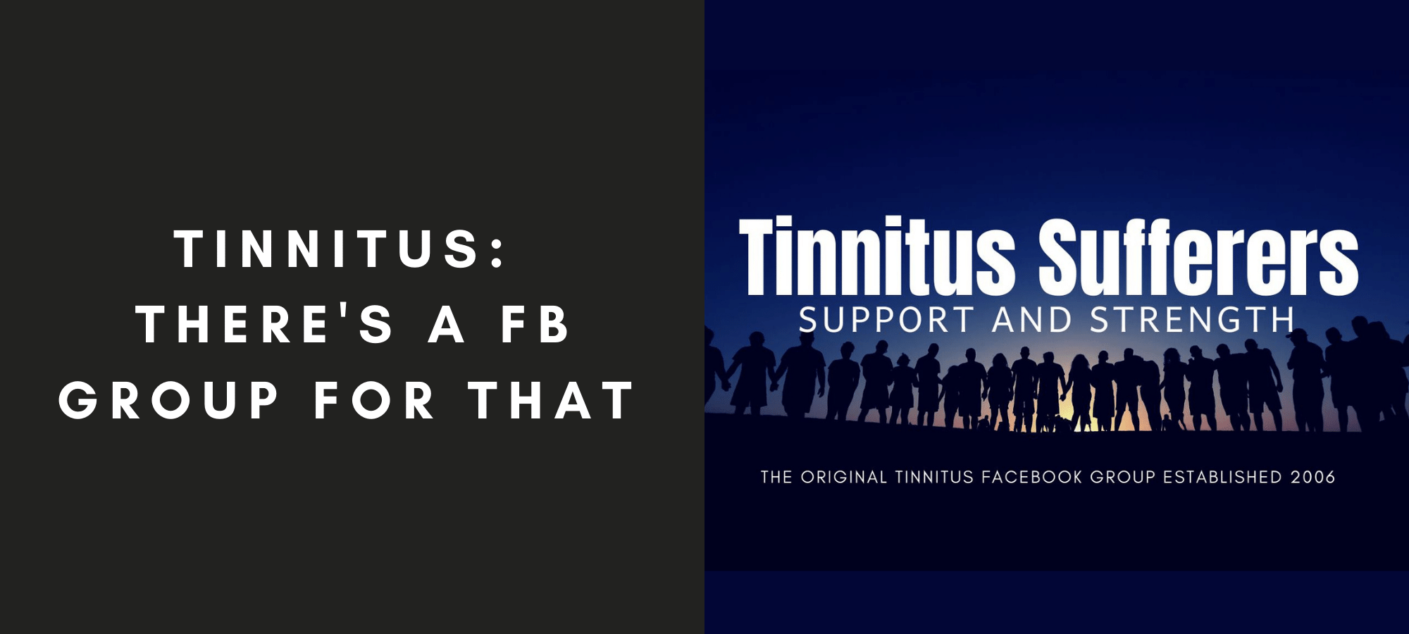 Tinnitus: There's a Facebook Group for that!