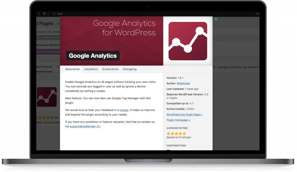 add Google Analytics Wordpress Lipstick and Pixels
