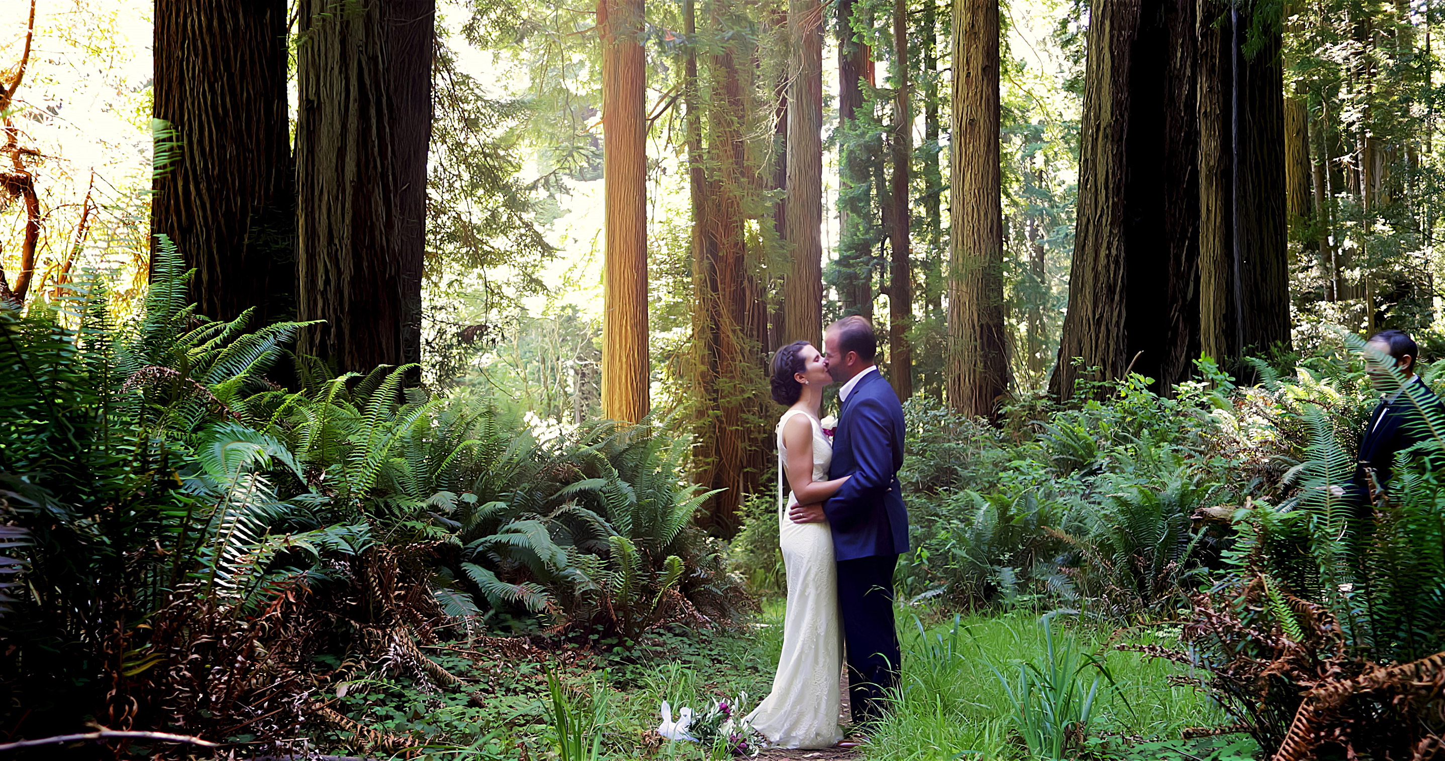 Husband and Wife Kissing in the Redwood Forest in Crescent City, Ca