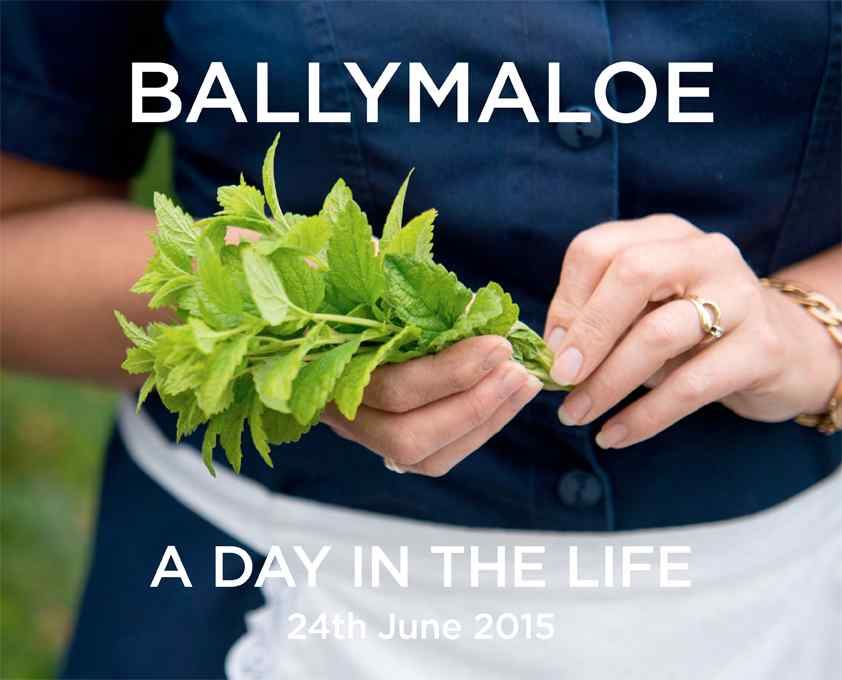 Behind the scenes at Ballymaloe