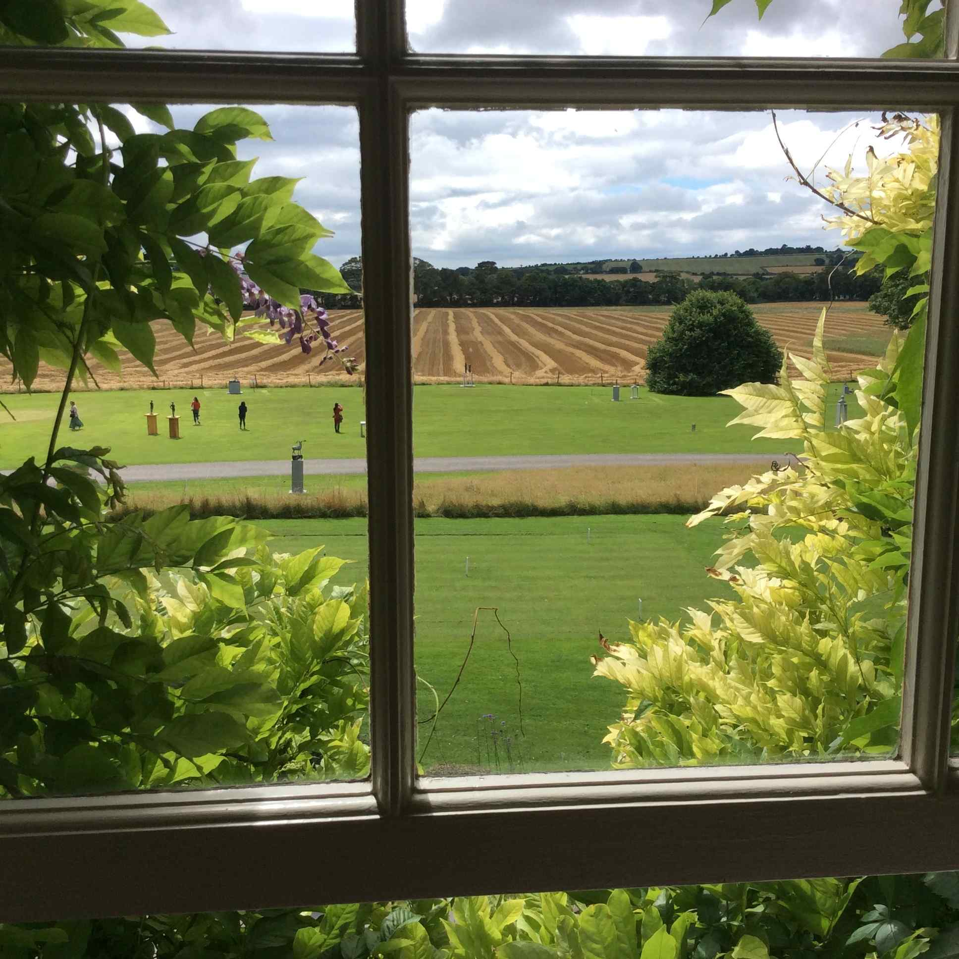 Guest blog: A room with a view - Chloe aged 15
