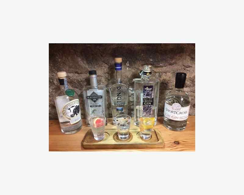Irish Gin & Tonic Festival