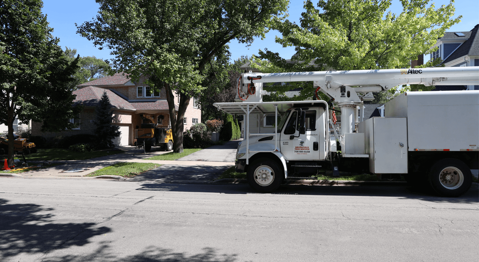 Lot Clearing in Chicagoland by Brookfield Tree Service