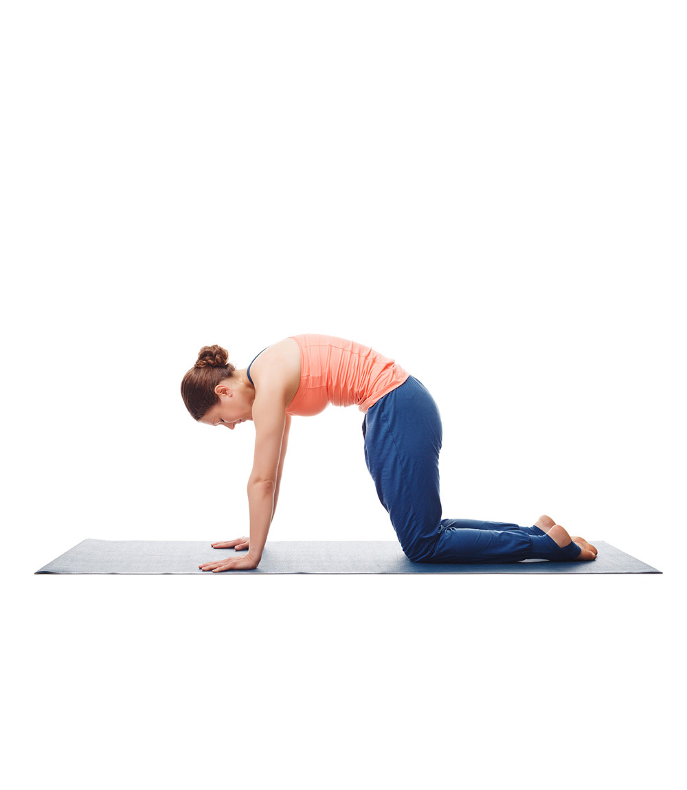 Mid-Back Exercises