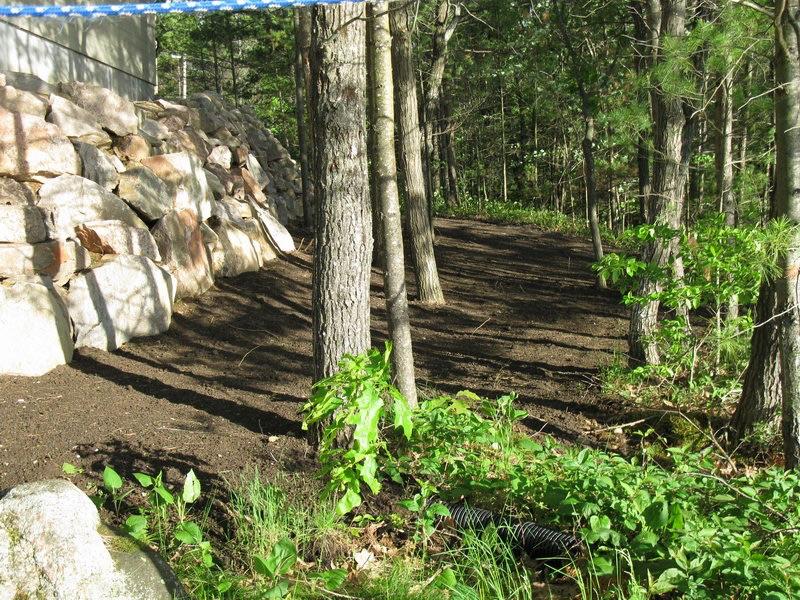 Design & Build Project: Mississauga Lake Addition - Back Yard Landscaping