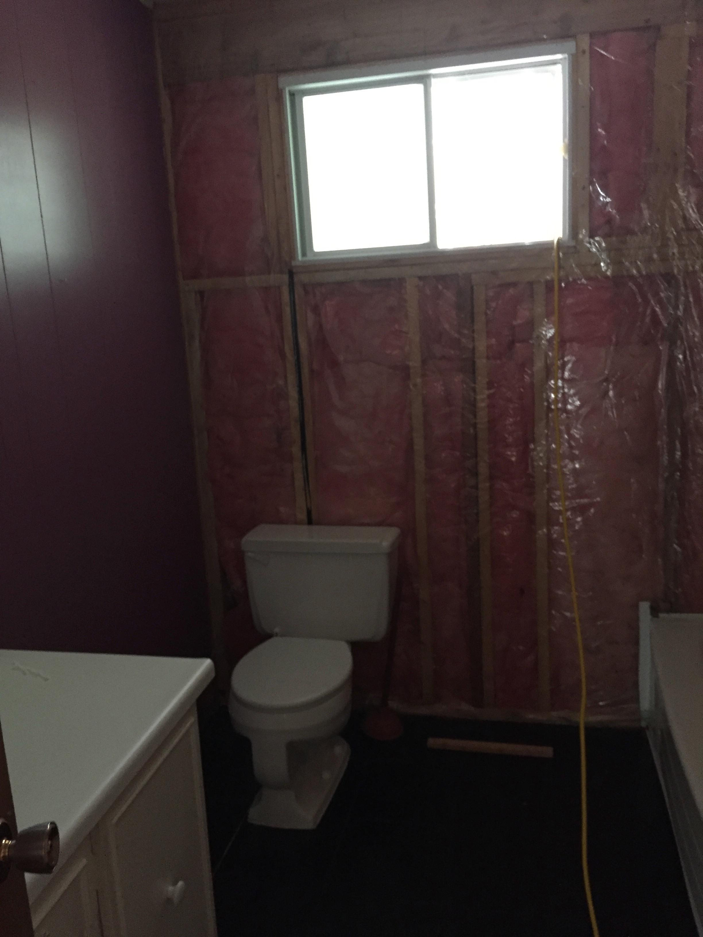 Design & Renovate Project: The Conversion - Bathroom Construction