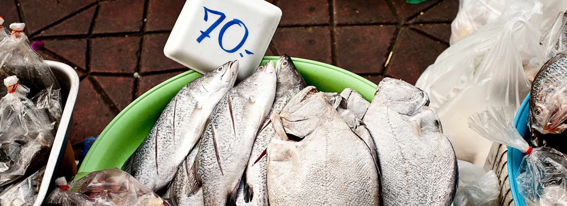 """""""Teach a man to fish…"""" The case for empowering low-income households to shop efficient"""