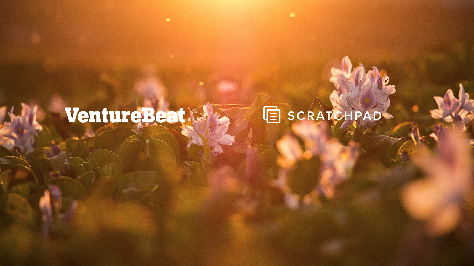 Scratchpad raises $13 million to power-up Salesforce with a productivity workspace for sales teams