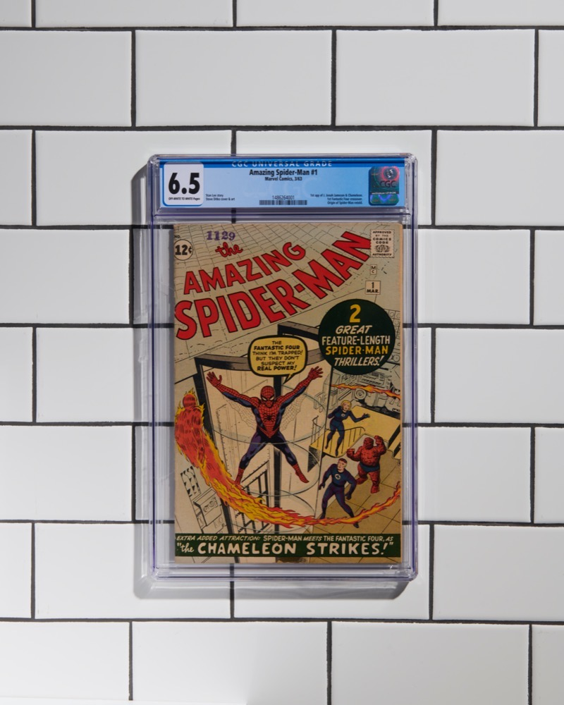 Amazing Spider Man #1 (CGC 6.5)