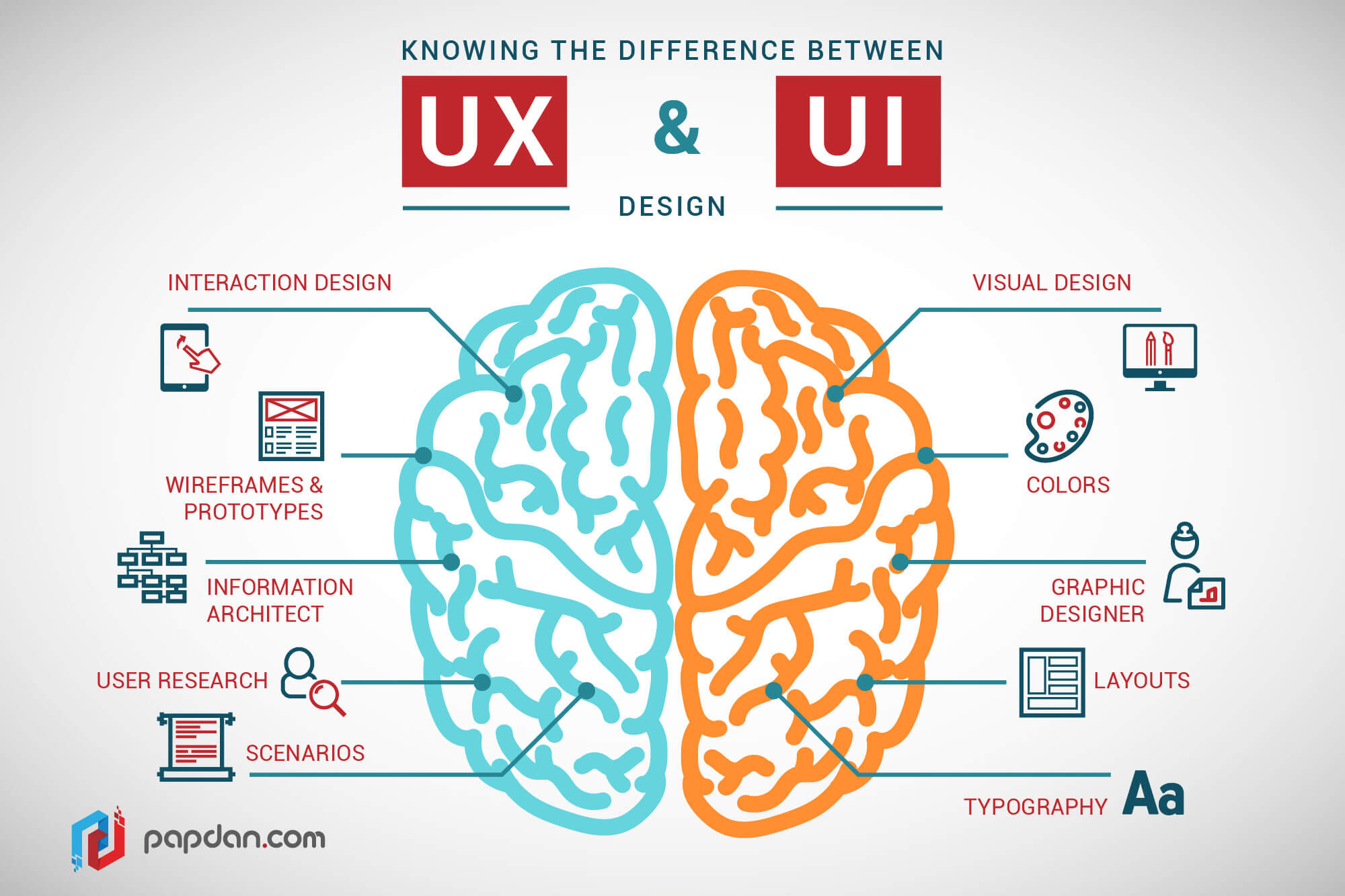 diagram of a brain, showing the difference between UX (interactions, wireframes, information architecture, user research) and UI (visual, color, layouts, typefaces)