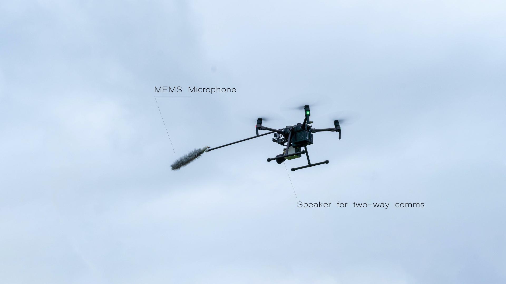 Dotterel Live Stream Audio from a UAV
