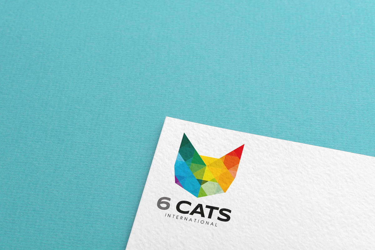 6 CATS International branding by Prosper