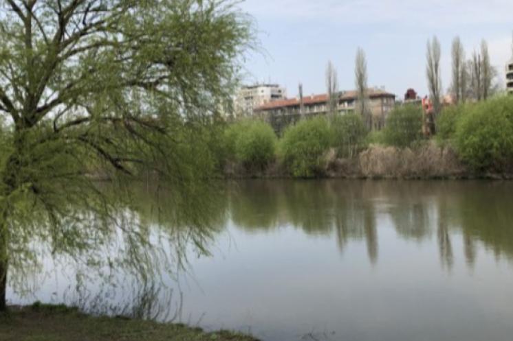 ДБ поиска да се прекрати поръчката за почистване на Марица