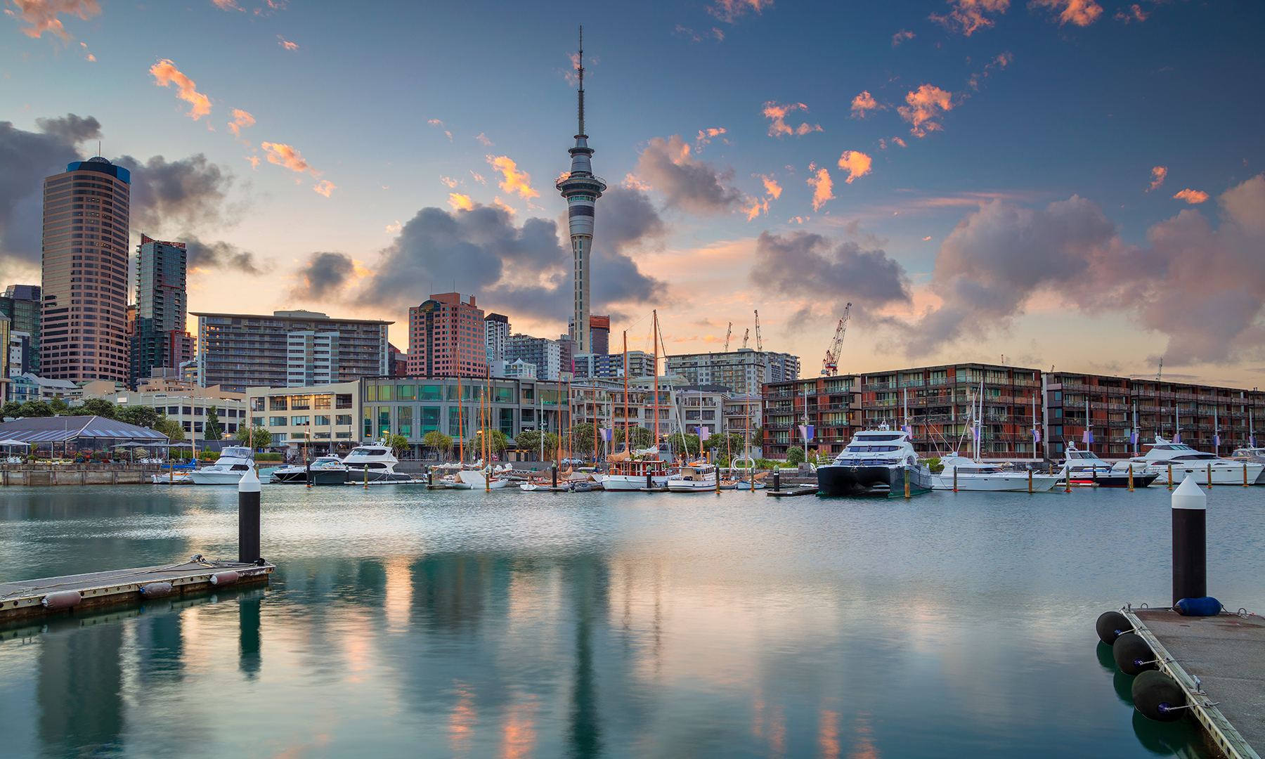 Partner Wholesale Networks launches into New Zealand market