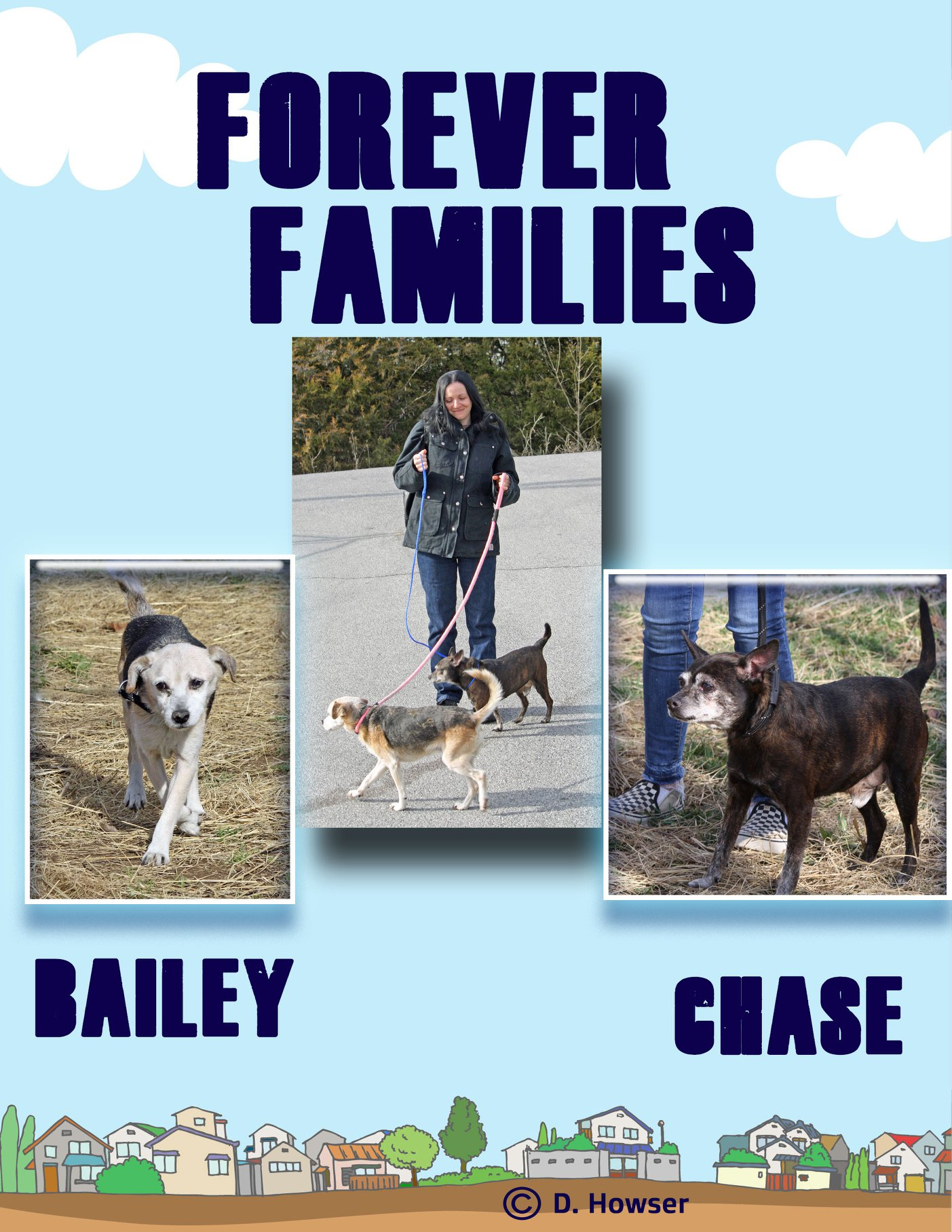 Two senior shelter dogs -- Bailey and Chase -- who were rescued by the woman pictured.