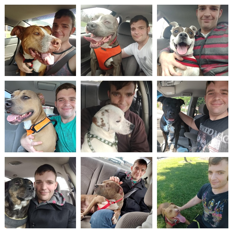 Daniel Wallen taking a selfie with nine shelter dogs (most are pit bulls).