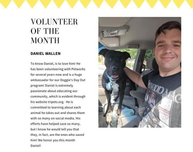Volunteer of the Month reward from Petworks, issued to Daniel Wallen