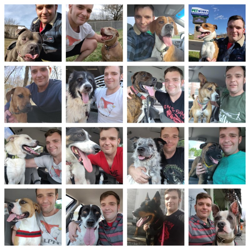 Daniel Wallen posing with sixteen of his rescue dog friends.