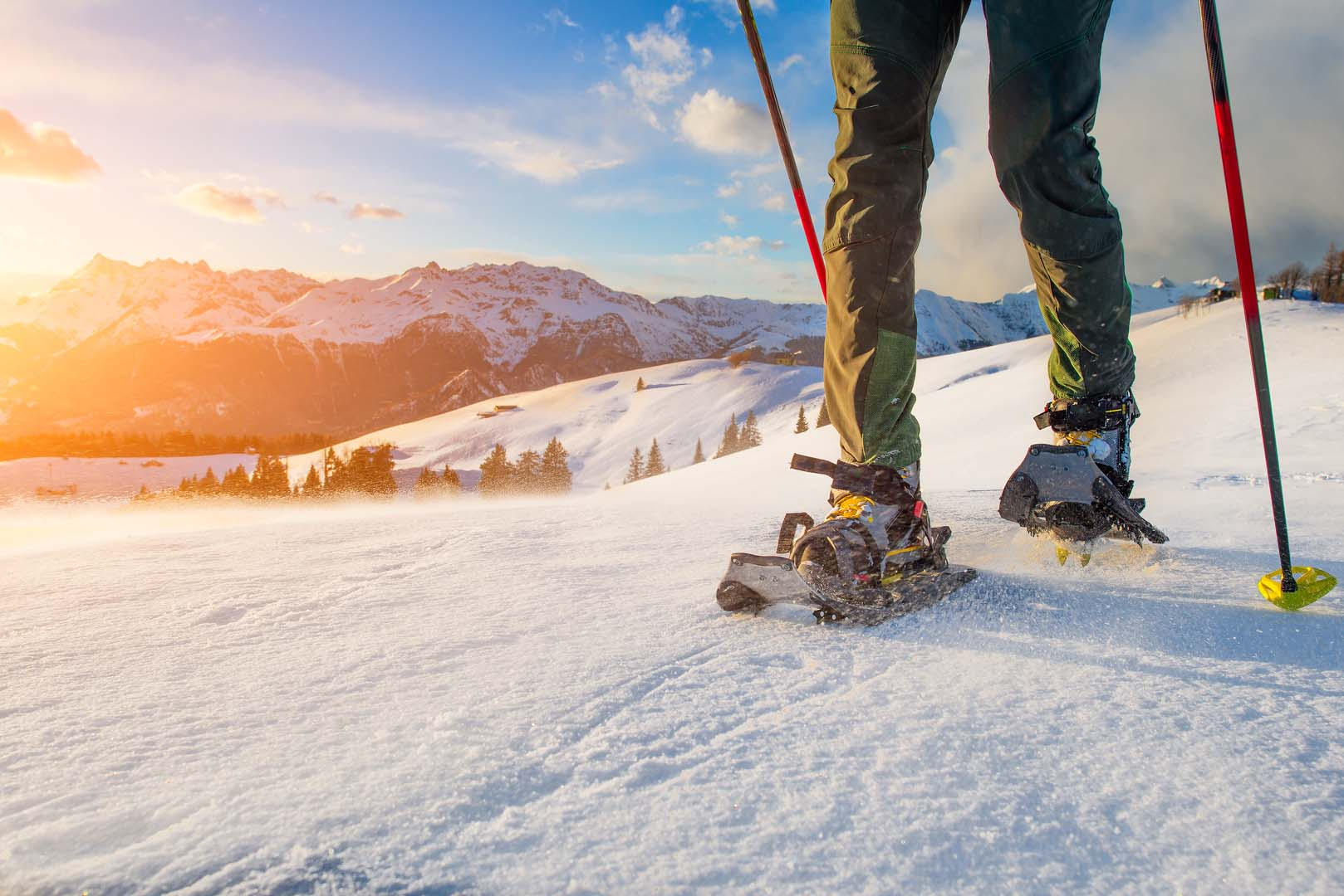 Snow shoe trips