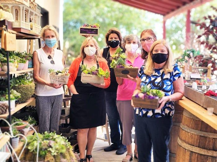 Ladies gardening with succulents