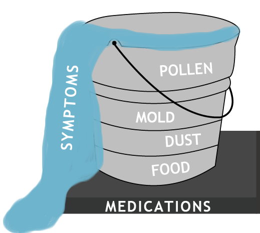 Allergic Load Bucket Theory