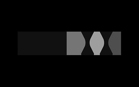 Deutsche Industrie Holding
