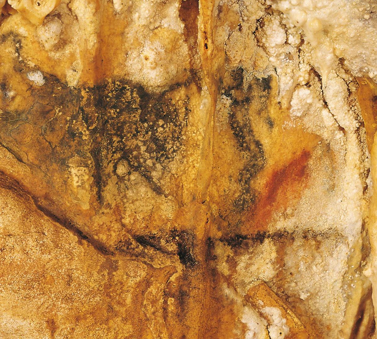 Peinture murale préhistorique - Grotte de Villars