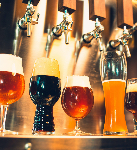 Craft Beer Brewery Investment