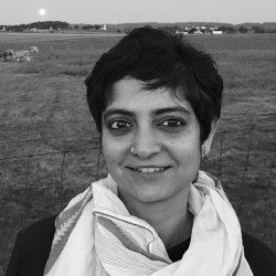 Ms. Mekhala Krishnamurthy