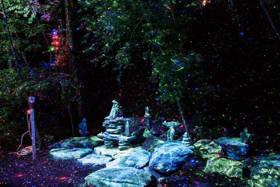 Foresta Lumina, utiliser le potentiel de la nuit en tourisme