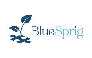 BlueSprig Autism Centers logo
