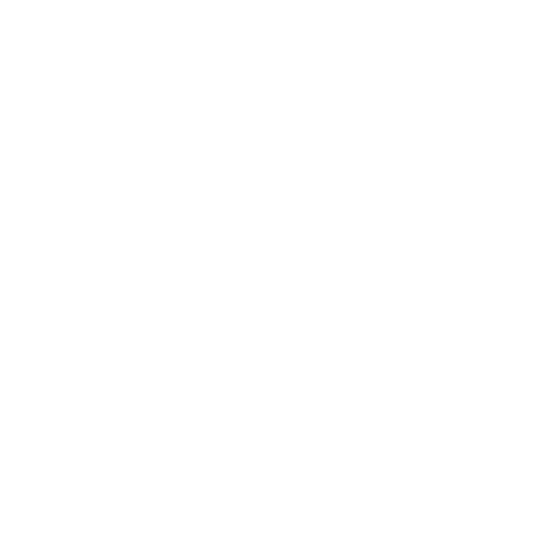 Dell computer technology company logo