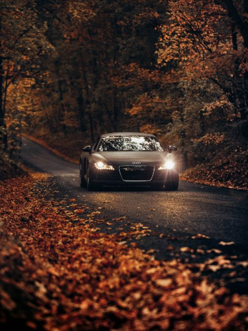 A promotional video shoot featuring a new Audi sports car driving through Autumn leaves