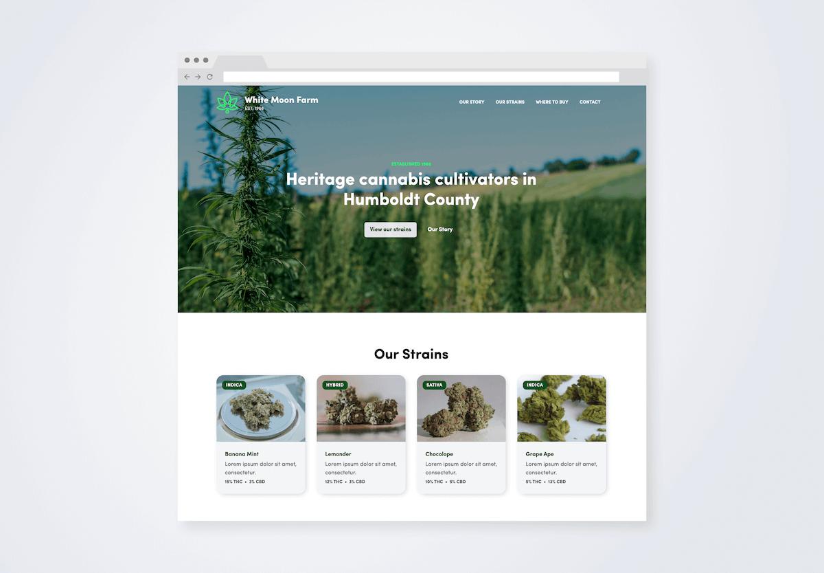 Our website design work