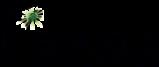 Saga Analytics logo