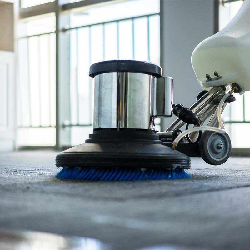 Organic carpet cleaning in Parker, CO