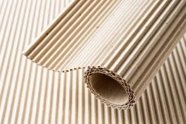 Corrugated paper close up