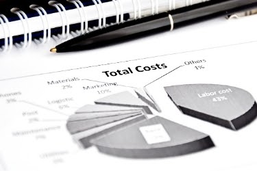 Pie chart with total costs of the company