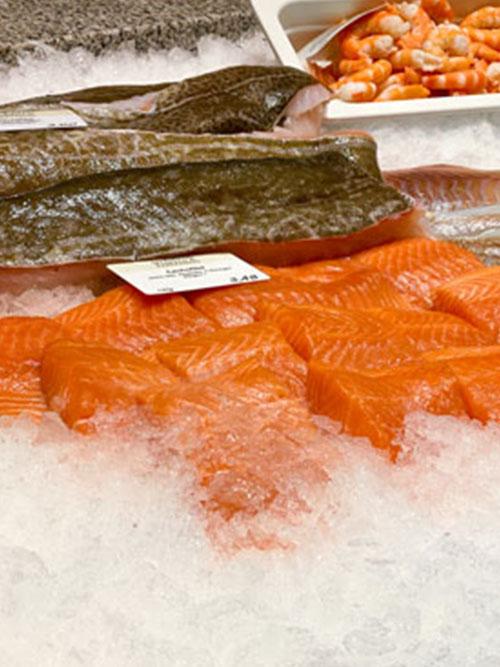 Portola Fischtheke mit Lachs auf Eis