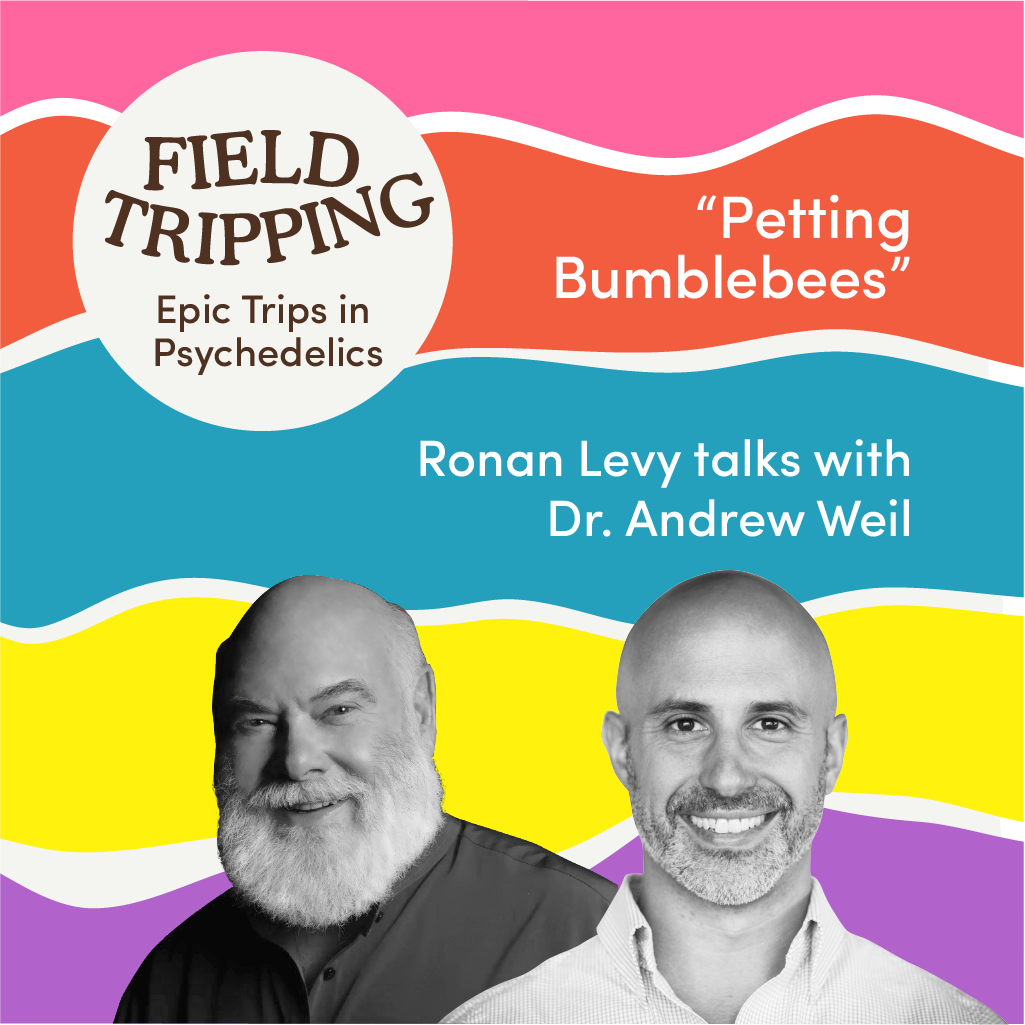 #4 Petting Bumblebees   Dr. Andrew Weil