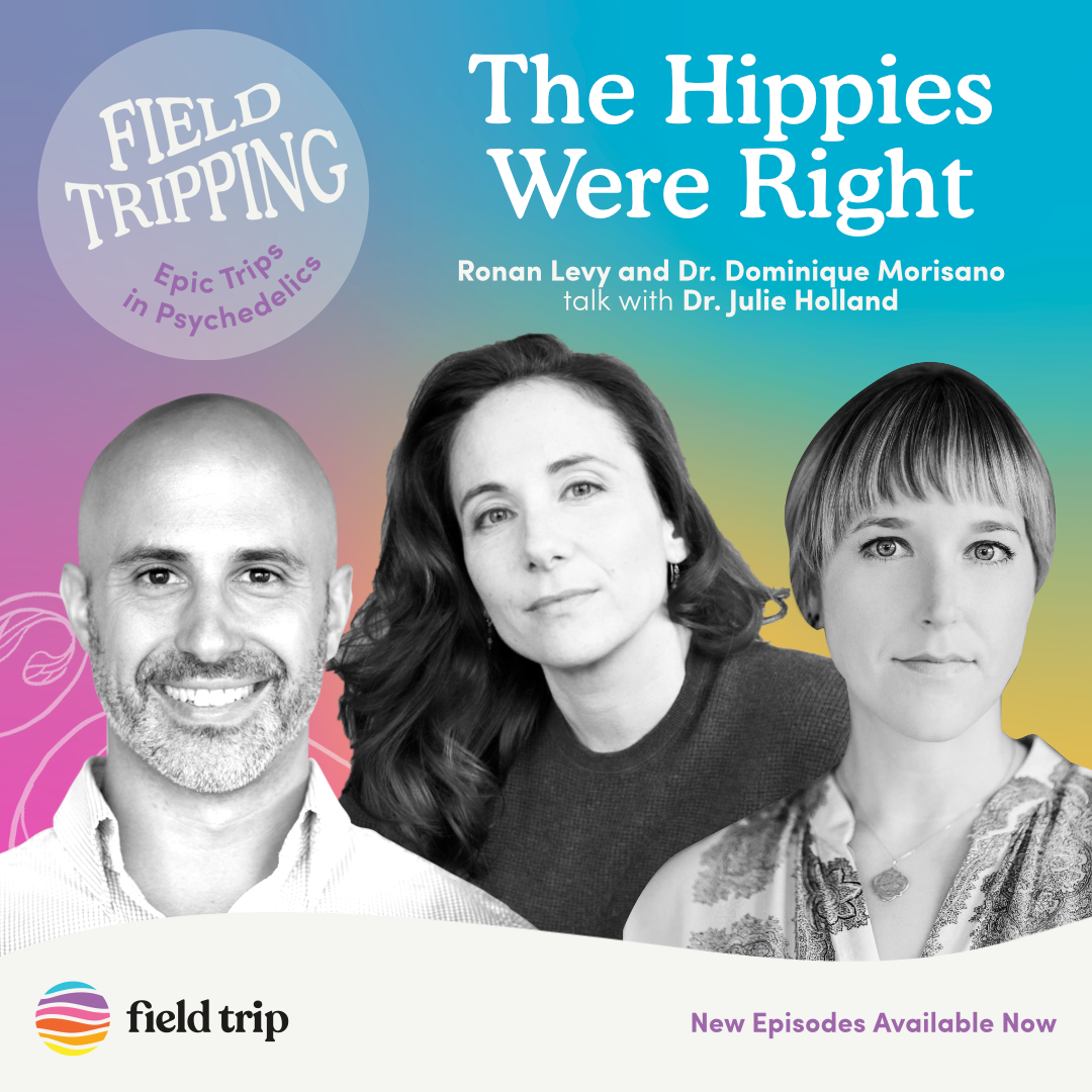 #23 The Hippies Were Right   Dr. Julie Holland